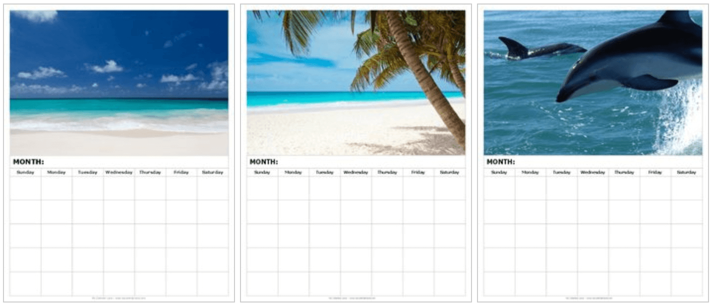 Blank Calendar Printable at My Calendar Land